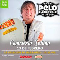 PELO D´AMBROSIO concierto Intimo LA ESTACIÓN DE BARRANCO - BARRANCO - LIMA