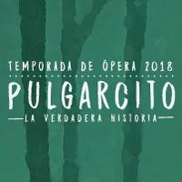 PULGARCITO CORO NACIONAL DE NIÑOS GRAN TEATRO NACIONAL - SAN BORJA - LIMA