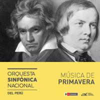 MUSICA DE PRIMAVERA - ORQUESTA SINFONICA NACIONAL GRAN TEATRO NACIONAL - SAN BORJA - LIMA