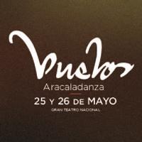 VUELOS, LOS SUEÑOS DE DA VINCI GRAN TEATRO NACIONAL - SAN BORJA - LIMA