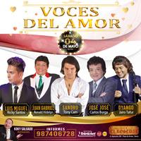 VOCES DEL AMOR 4MAYO19 EL ROSEDAL - SANTIAGO DE SURCO - LIMA