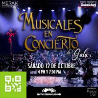 MUSICALES EN CONCIERTO TEATRO PERUANO JAPONES - JESUS MARIA - LIMA