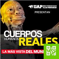 CUERPOS HUMANOS REALES JOCKEY PLAZA - SANTIAGO DE SURCO - LIMA