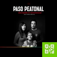 PASO PEATONAL CENTRO CULTURAL RICARDO PALMA-MIRAFLORES - LIMA